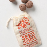 Guerrilla Seed Bombs