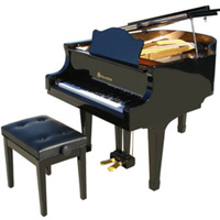 Schoenhut Pro Baby Grand Piano