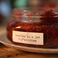 Anarchy in a Jar