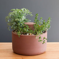Self-Watering Planter by Joey Roth