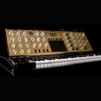 Tenth Anniversary Minimoog Voyager