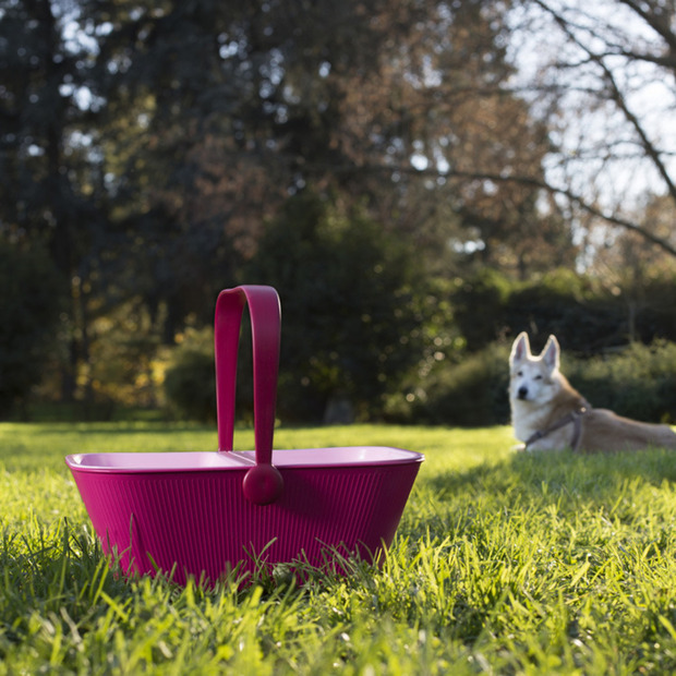 PetNic Basket by Miriam Mirri for Alessi
