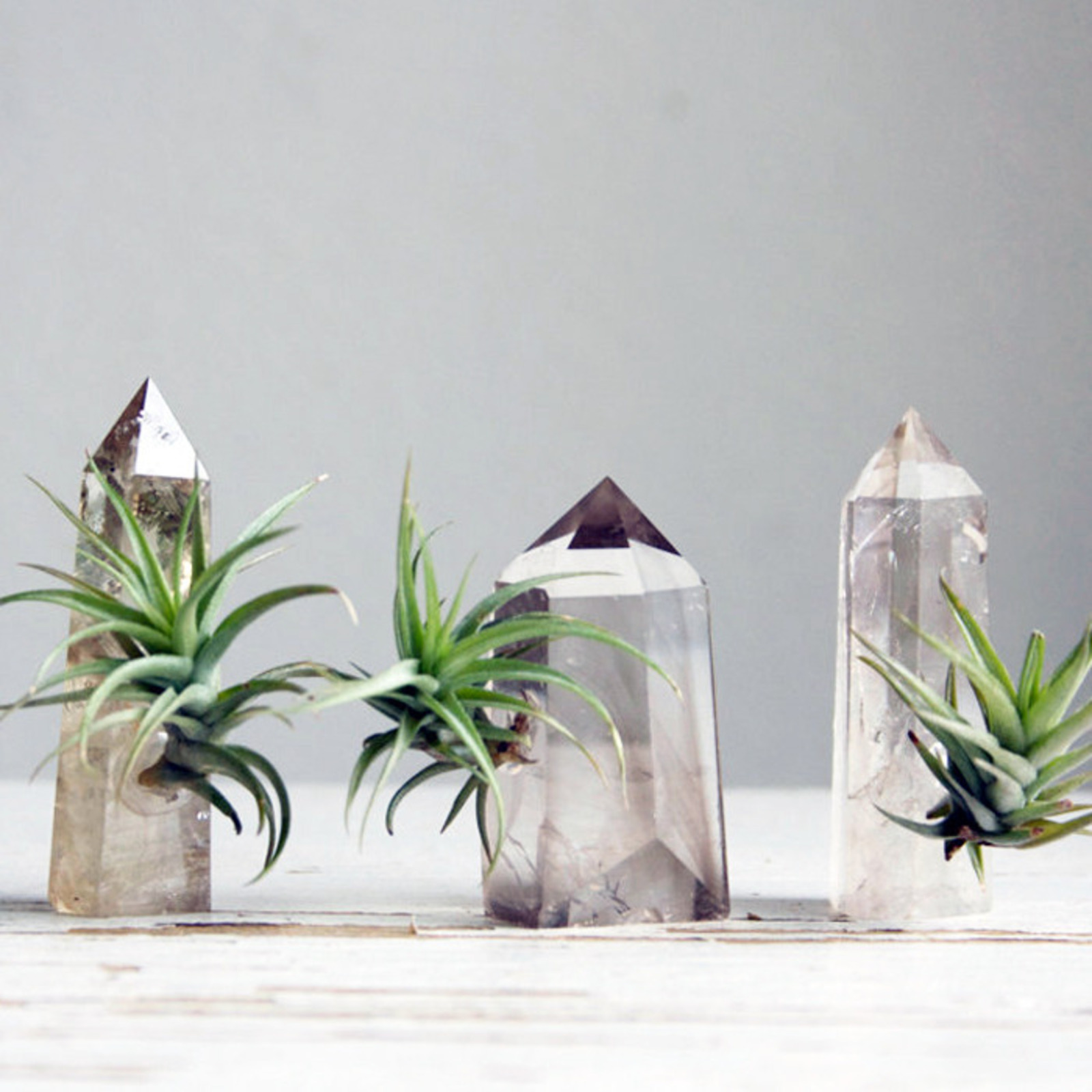Six Unexpected Planters