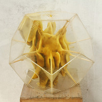Ren Ri's Beeswax Sculptures