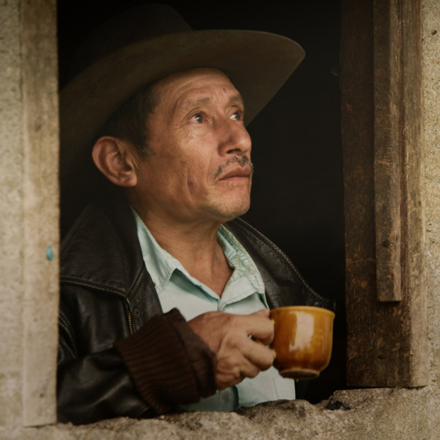 A Film About Coffee: Telling the story of the specialty trade, from farmers to baristas