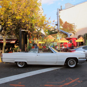 Song of the Car: 1970 Cadillac de Ville Convertible