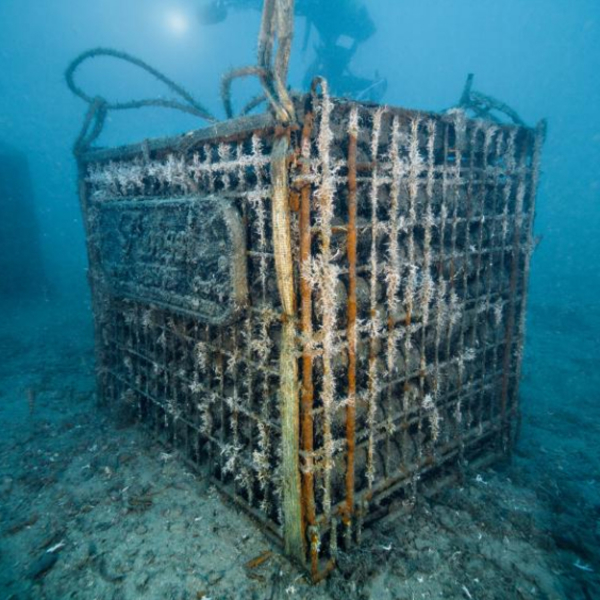 Aging Champagne Under the Sea