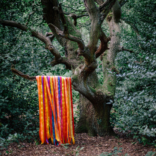 James Holden + the Animal Spirits: Pass Through the Fire