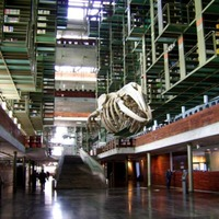 Biblioteca Vasconcelos