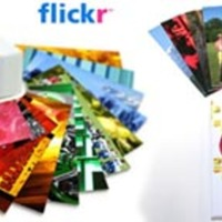 Moo Flickr MiniCards