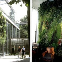Patrick Blanc: Vertical Gardens