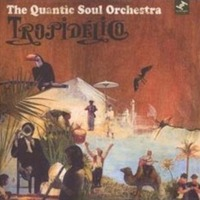 Quantic Soul Orchestra: Tropidelico