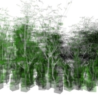 Personal Data Forest