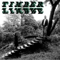 Timber Timbre