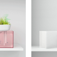 Benjamin Graindorge x Duende Studio: Floating Garden Aquarium
