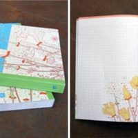 Jill Bliss: Native Flowers Journal