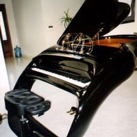 Schimmel/Colani Pegasus Grand Piano