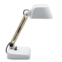 Royal Tichelaar Makkum Work Table Lamp