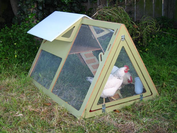 ChickenCribs1.jpg