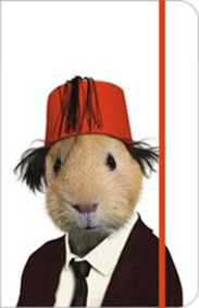 hamsterhat.jpg