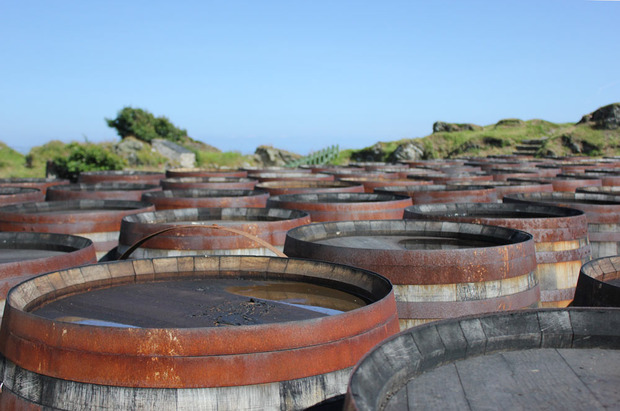 Ardbeg-Whisky-Casks.jpg