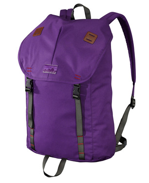 Patagonia-new-summit-pack-purple-7.jpg