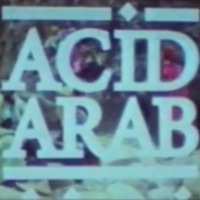 acid-arab-berberian-wedding.jpg