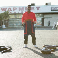 shabazz-palaces-lese-majesty.jpg