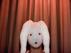 bunnynose-new-1.jpg