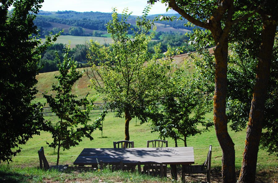 pieve-table.jpg