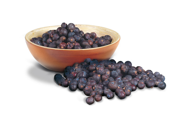 Bombay_Advert_Berries.jpg
