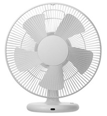 5th_03_fan.jpg