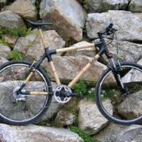 Bamboo Bike
