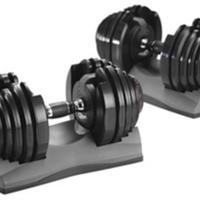 Bowflex SelectTech Dumbells