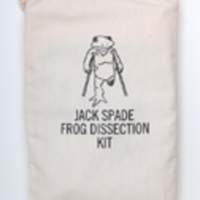 Frog Dissection Kit from Jack Spade