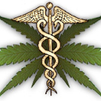 Marijuana May Shrink Tumors