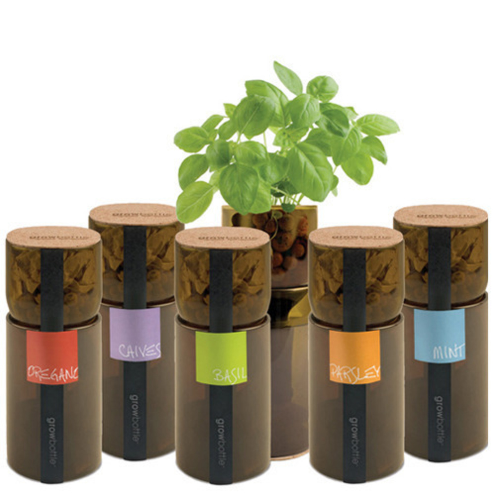 Grow Bottle Hydroponic Herb Gardens Cool Hunting