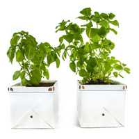 Patch Herb Planters